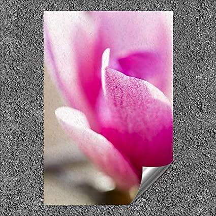 | 32x48 Circle CapturePhoto Nature -Pretty in Pink Outdoor Contour Wall Decor CGSignLab 5-Pack