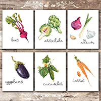 Kitchen Wall Decor Art Prints - Botanical Prints - (Set of 6) - Unframed - 8x10s