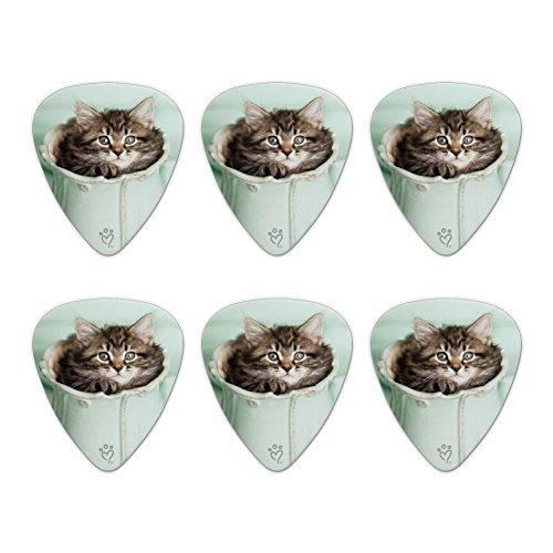 Manx Kitten Cat Vase Novelty Guitar Picks Medium Gauge - Set of 6