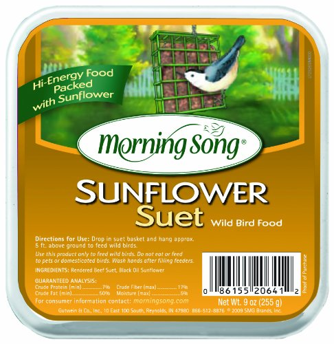 - Morning Song 11454 Sunflower Suet Wild Bird Food, 9-Ounce