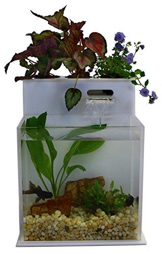 Fin Flower Aquaponic Aquarium System product image