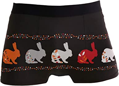 Multi Mens Fashion Rabbit Folk Flowers Mens Underwear Boxer Briefs Breathable