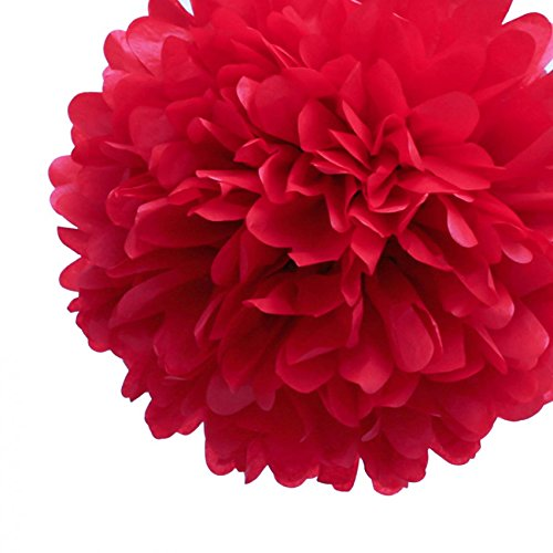 [Red Tissue Puff Flower Paper Pom Pom Party Decorations (10