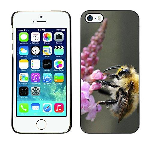 Premio Sottile Slim Cassa Custodia Case Cover Shell // F00013353 insecte // Apple iPhone 5 5S 5G