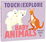 Baby Animals: Touch and Explore