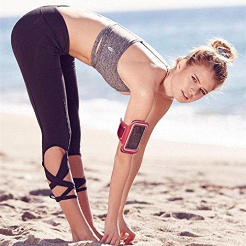 FAPIZI ♥ Women Pants ♥ Women Sports Gym Yoga Workout Cropped Leggings Fitness Lounge Athletic Pants (M, black)