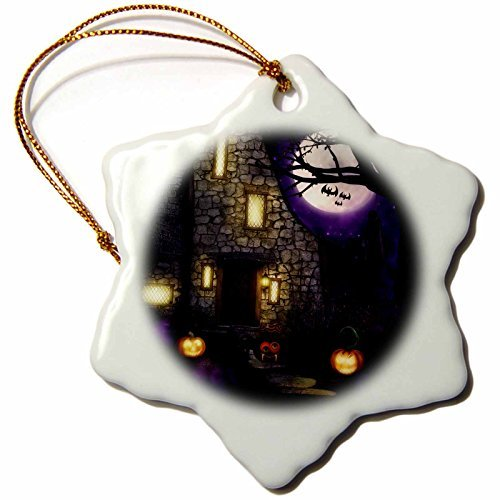 (Simone Gatterwe Designs Holidays Halloween - A haunted halloween house with a funny orange and black spider - 3 inch Snowflake Porcelain Ornament)