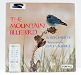 The Mountain Bluebird, Ron Hirschi, 0525650105