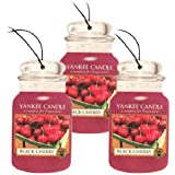 Yankee Candle Car Jar Classic Cardboard Car ,Home and Office Hanging Air Freshener, Black Cherry Scent (Pack of 3)