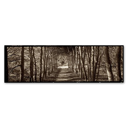 Hampton Gates Promenade II by Alan Blaustein, 10x32-Inch Canvas Wall (Hampton Gate)