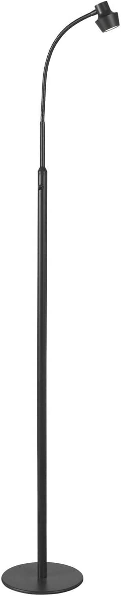 Kenroy Home Modern LED Floor Lamp ,52 Inch Height