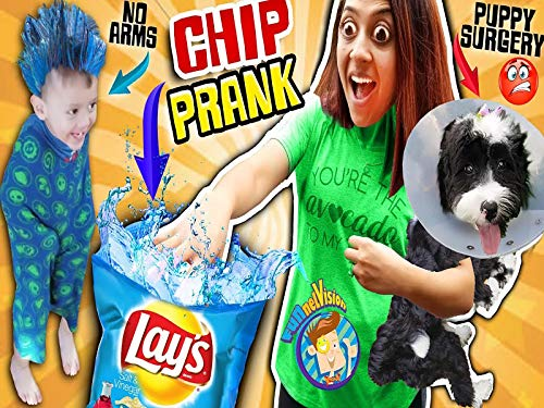 Chip Prank And Puppy Surgery Boo Boo Plus Gaming 1st Reaction