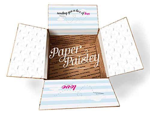 Paper Plane Box of Love Care Package Sticker Kit