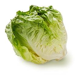 Butter Lettuce, One Head