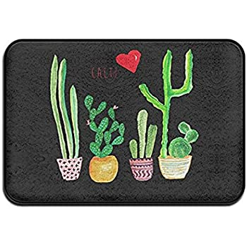 Amazon Com Cacti Cactus Love Artical Indoor Outdoor