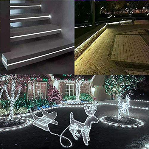 100 Feet 720 LED Rope Lights,2-Wire Low Voltage Waterproof Rope Lights Outdoor,Indoor Background Lighting Idear for Trees,Bridges,Eaves,Pool,Wedding Use White