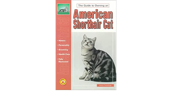 Guide to Owning an American Shorthair Cat (The Guide to Owning)
