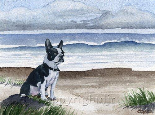 (Boston Terrier at the Beach Art Print by Watercolor Artist DJ Rogers)