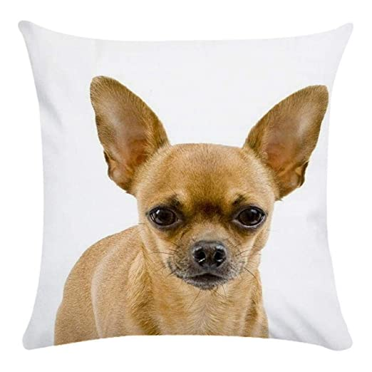 Almohada Chihuahua perro Impreso Sofá Cojín decorativo Caso agarre Bar almohada decorativa Cojín 8