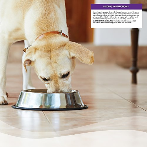 Wellness Thick & Chunky Wet Canned Dog Food