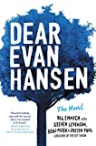 img - for Dear Evan Hansen: The Novel book / textbook / text book