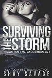 Download Surviving The Storm: Surviving Raine & Bastian's Storm Boxed Set in PDF ePUB Free Online