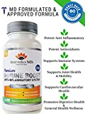 Turmeric Curcumin Anti-inflammatory & Immune Boost System with Ginger & Vitamin C | Joint Support | 100% Natural | Non-GMO | Anti-inflammatory & Antioxidant