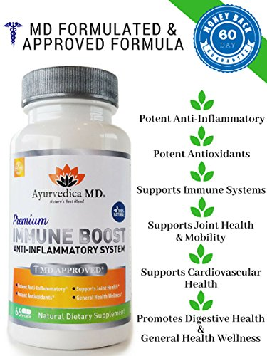 Turmeric Curcumin Anti-inflammatory & Immune Boost System with Ginger & Vitamin C - 100% Natural - Made in USA - 66 Veggie Caps, Anti-inflammatory & ()