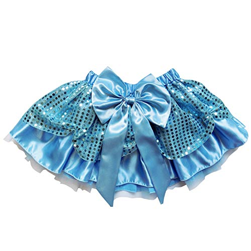 Sparkle Running Costume Skirt Race Tutu, Costume, Princess, Ballet, Dress-Up, 5K (L (One Size for Adults), Cinderella)