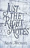 Just the Right Notes, Sean Michael, 1610400038
