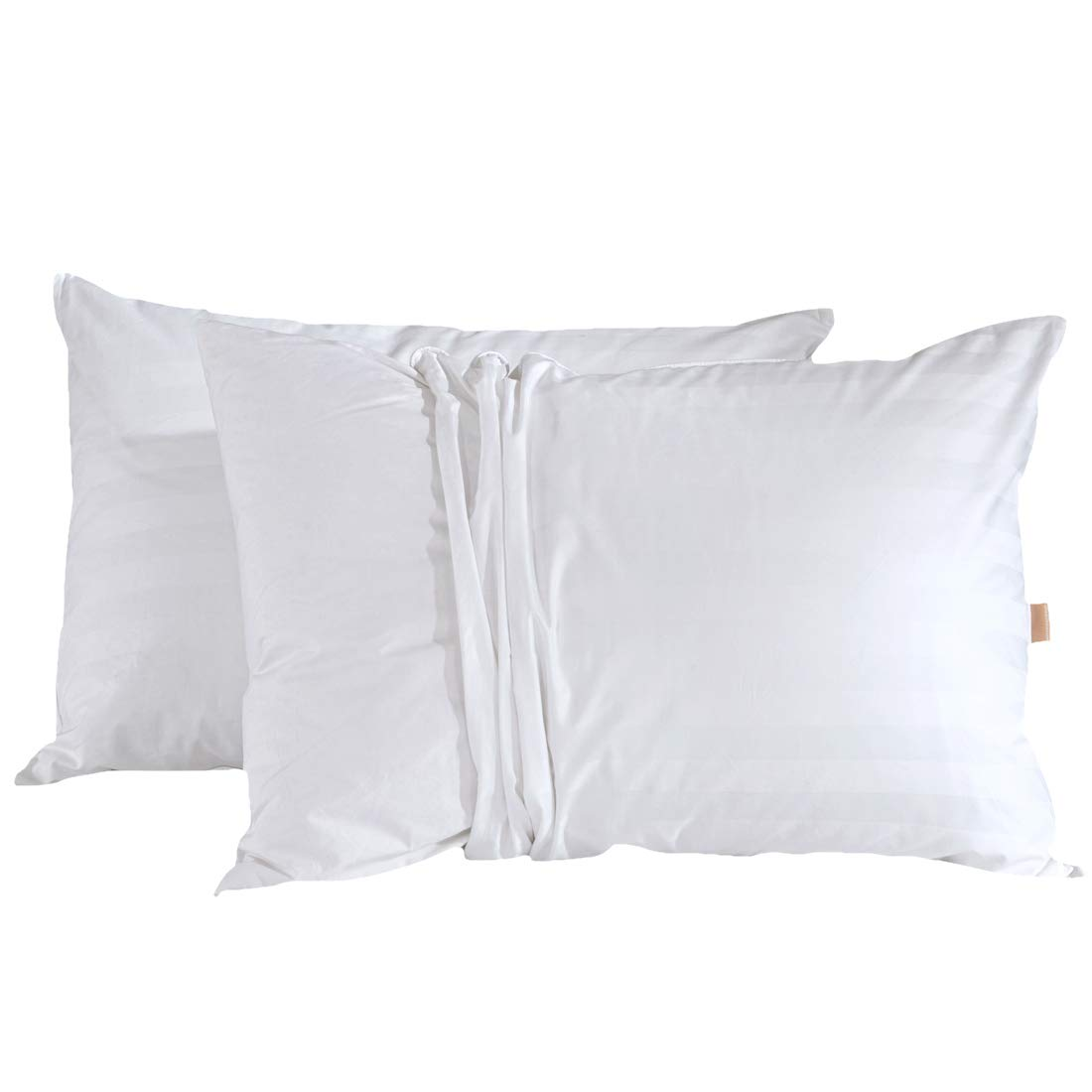 (King) - Puredown White Goose Down Pillow with 2 free pillow protectors, King Size, White, Set of 2 B019PZNHCS  キング