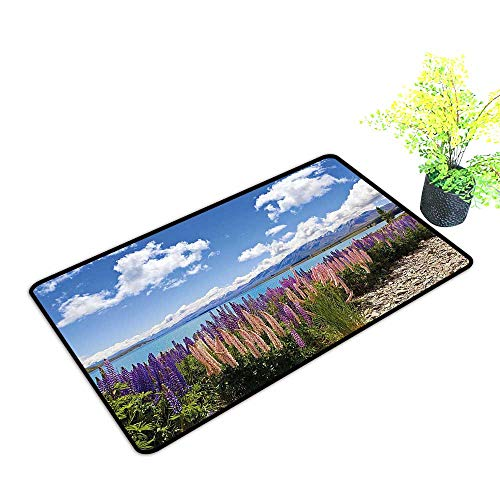 gmnalahome Front Welcome Entrance Door Mats Lup Wildflowers The Shore Cloudy Sky Digital Sky Blue Home Decor Rug Mats W35 x H23 INCH