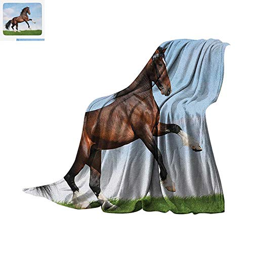 Luoiaax Horses Custom Design Cozy Flannel Blanket Bay Horse Pacing on The Grass Energetic Noble Character of The Nature Concept Digital Printing Blanket 50