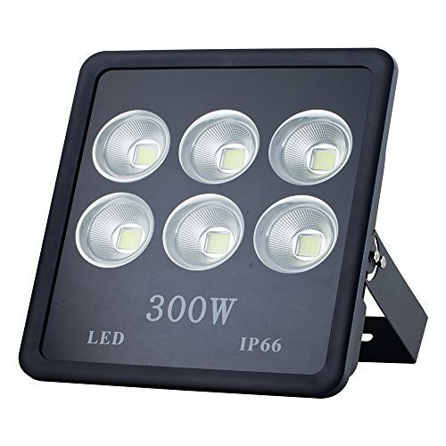 Musuger 300W Super Bright Outdoor High Power LED Flood Light with Fixture Daylight White 6000K Waterproof 85 V -265 V AC