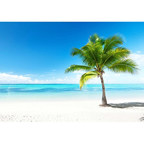 wall26 - Palm and Beach - Removable Wall Mural   Self-Adhesive Large Wallpaper - 100x144 inches by wall26 (Image #1)