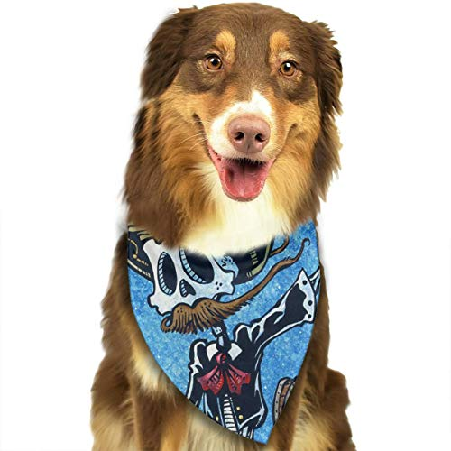FRTSFLEE Dog Bandana La Bomba Scarves Accessories Decoration for Pet Cats and -