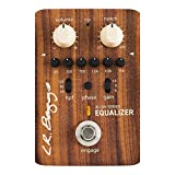L.R. Baggs Align Equalizer Acoustic Guitar Effects