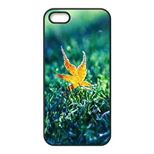 iPhone 5,5S Phone Case Grass MB15397