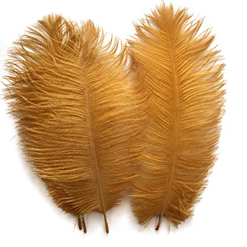 Shekyeon Gold 10-12inch 25-30cm Ostrich Feather Home Decoration DIY Craft Pack of 10]()