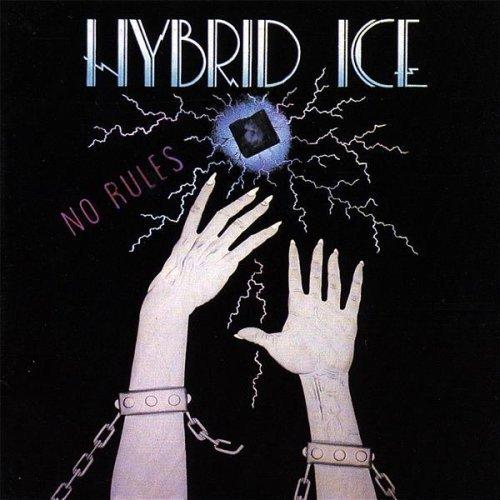 03 Hybrid - 5