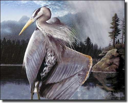 Northwest Rain by Justin Sparks - Heron Bird Ceramic Accent Tile 8