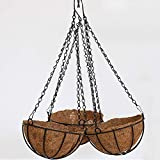 XINYANG Wrought Iron Walled Garden Coconut Palm Basket Wall Decoration Flower Basket(B)