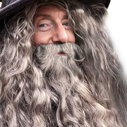 Wizard Halloween Costume - Halloween Wizard Wig and Faux Beard