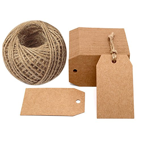 100 PCS Kraft Paper Gift Tags 2.7''x 1.5'' Craft Tags with String Blank Hang Tags,Price Tags with 100 Feet Jute Twine (Brown)