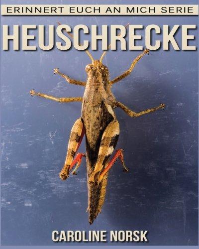 Heuschrecke: Ein Kinderbuch mit erstaunlichen Fotos und interessanten Fakten über Heuschrecke (Erinnert euch an mich Serie) (German Edition) pdf