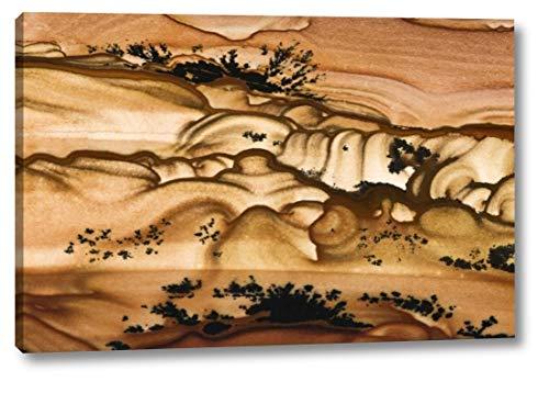 (Oregon Close-up of Biggs Picture Jasper Stone by Dennis Kirkland - 16