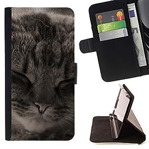 Momo Phone Case / Flip Funda de Cuero Case Cover - Manx American Shorthair Cat Dormir; - Samsung ALPHA G850