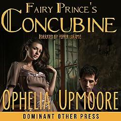 Fairy Prince's Concubine