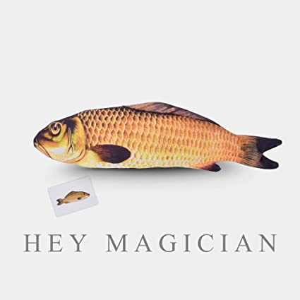 Appearing Fish Magic Tricks Fish Appearing From Card Case Magic 28cm
