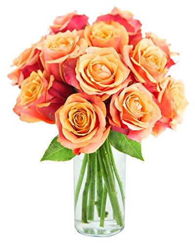 KaBloom Bouquet of 12 Fresh Orange Roses (Farm-Fresh, Long-Stem) with Vase by KaBloom